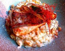 Tribeca Restaurante - Brasserie