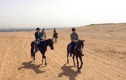 Cairo Horse Riding School