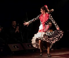 Passion of Flamenco Art