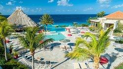 Koraal Curacao