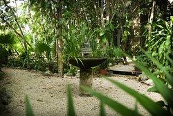 jardín con caminos de terrasería estilo Tulum, con pequeño lago zen y amacas