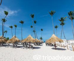 Beach at The Grand Reserve At Paradisus Palma Real