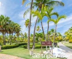 Grounds at the Melia Caribe Beach Resort