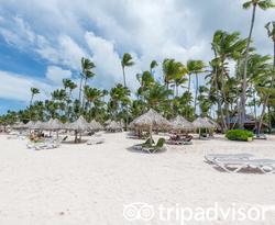 Beach at the Melia Punta Cana Beach Resort
