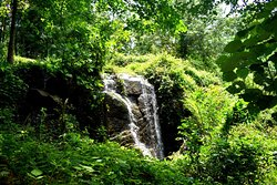 Water fall near the property