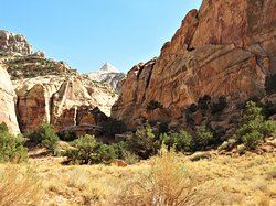 Capitol Gorge Trail