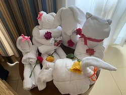 Some of Anna's towel art!