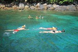 Baby Island Snorkeling