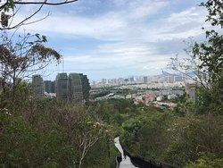 Lin Chun Ling Forest Park