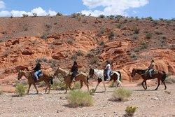 Silver State Horseback Riding Tours