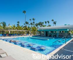 The Bar Pool at the Hotel Riu Palace Punta Cana