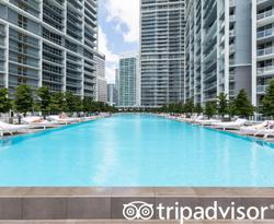 Pool at the Pools at the W Miami