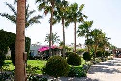 Außenanlage -Garten