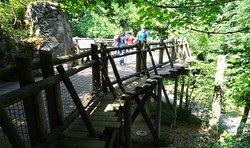 Footbridge over orangutan enclosure at the zoo.