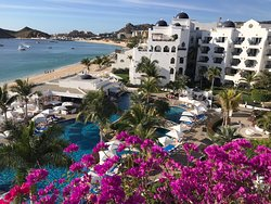 Wintering in Cabo