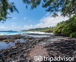Beach at the Travaasa Hana, Maui