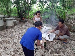 Cooking rice in bamboo.