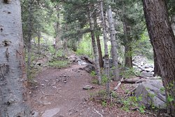 Part of trail. Lower Cascade Trail and Falls, Ouray, CO. May 2019