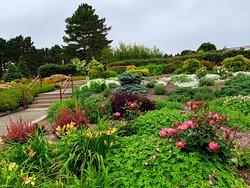 Humboldt Botanical Garden