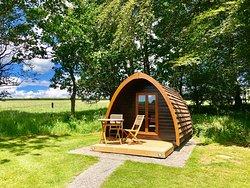 Glamping - Camping Pod