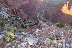 Paria Canyon and river just before it joins the Colorado River and the Grand Canyon.