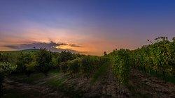 Il tramonto sulla collina Cadia