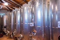 Sala vinificazione