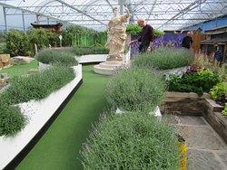 Crazy golf - brilliant!!