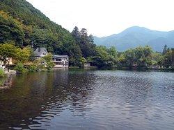 土曜昼の金鱗湖