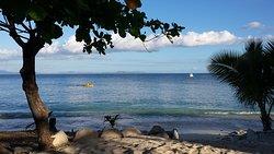 Paddle around the whole island