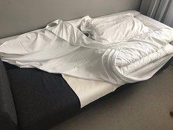 La honte pour un 5 étoiles !!! Je déconseille fortement cet hôtel. Ils ne font aucun effort pour trouver une solution. Vous payez une chambre pour 3 adultes !!! Et la 3eme personne dort sur le canapé avec une protection de merde !!!