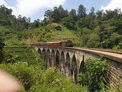 Green Lanka Vacations
