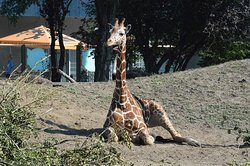 Wroclaw Zoo & Afrykarium