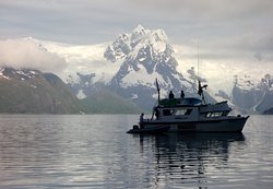 Alaska Fjord Charters
