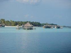 Привет, Мальдивы.
