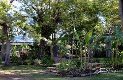 Crossing Inn Gardens and Environs