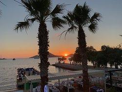Sofi's Restaurant & Beach