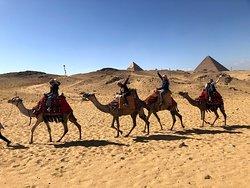 可以騎駱駝
