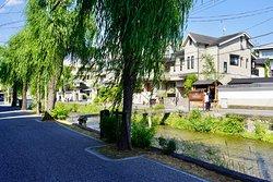 the Shirakawa River