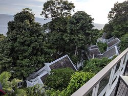 Great place to stay, amongst the rainforest!