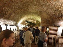 Linnan kellarit rakennettiin näin suuriksi, jotta sinne pystyttiin ajamaan hevosvankkureilla!