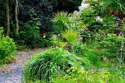 Cluain na dTor Seaside Gardens & Nursery