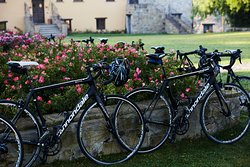Elevate your love for cycling on our top-of-the-line bikes, tuned to perfection and fit specifically to you.