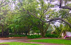Largo Central Park