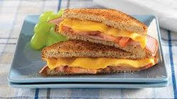 Cheese Ham Sandwich