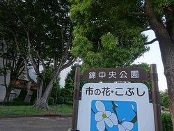 錦中央公園