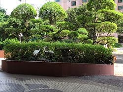Welcoming landscaping in the lobby of building.