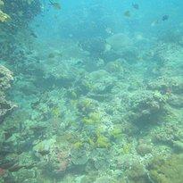 H2O Sportz Phuket