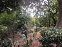 Oldest Zoo in Tokyo
