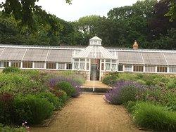 Wonderful walled garden